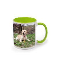Mug Green 325ml incl Delivery
